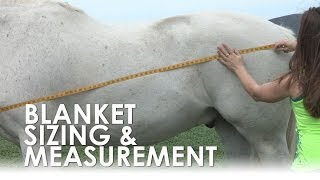 How To Measure For Horse Blanket Size & Fit
