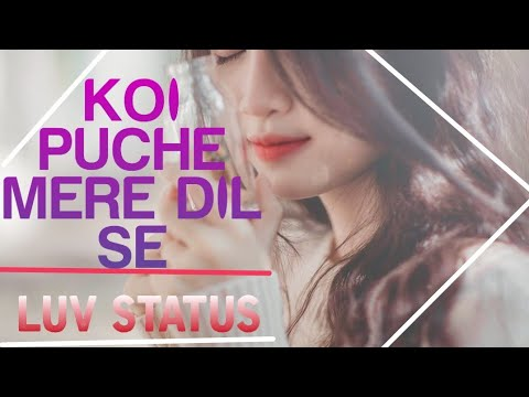 KOI PUCHE MERE DIL SE || NEW WHATAPP STATUS FOR U|| BY MAGICAL STATUS