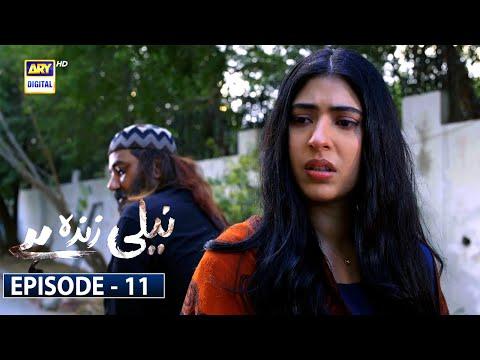 Neeli Zinda Hai Episode 11 [Subtitle Eng]   29th July 2021 - ARY Digital Drama