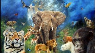 Необъяснимые животные видео.  Топ5 ОТВРАТИТЕЛЬНЫХ СПОСОБОВ ЗАЩИТЫ У ЖИВОТНЫХ
