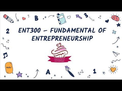 ENT 300   BUSINESS PLAN VIDEO AISUKURIMU ENTERPRISE