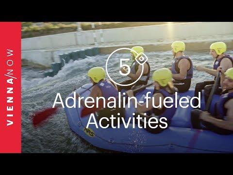 5 adrenalin-fueled activities in Vienna for adventure seekers | VIENNA/NOW Top Picks