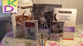 Бесплатная посылка корм PURINA для котят.Халява!!!(, 2016-03-06T21:12:10.000Z)