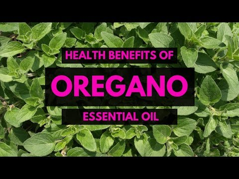 Top 10 Uses of Oregano Oil - Essential Oils Natural Cures - Oregano Oil Home Remedies for Health √