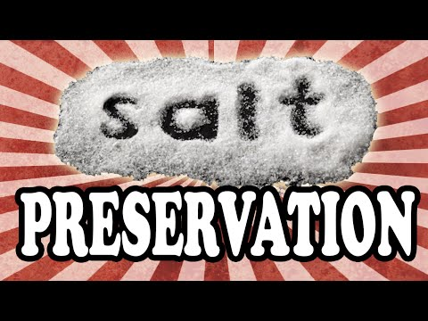 Why Salt Preserves Meat