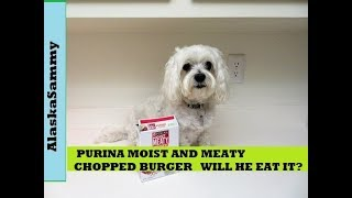 Purina Moist and Meaty Dog Food Chopped Burger Review Taste Test
