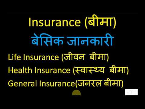 Basic Information Of Insurance ब म क ब स क