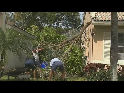 Davie residents clean up after tornado sweeps through South Florida
