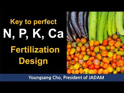 Key To Perfect N, P, K, Ca Fertilization Design.[Multi-language Subtitles]