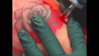 red rose tattoo timelapse