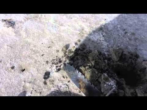 15 min. metal detecting at the Salt Lake,Utah