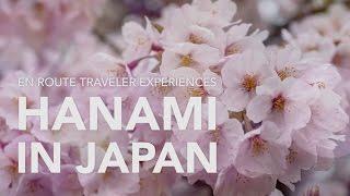 Hanami: Celebrating Japan's Cherry Blossoms