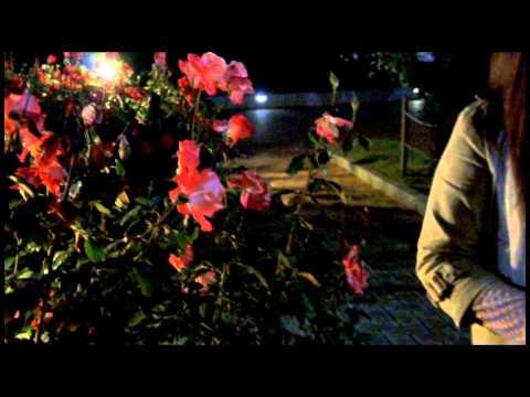 니케아 니케아 Nickea- 혼자 부르는 노래 (라이브 시리즈2)