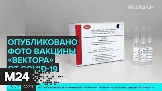 """Картина дня"": как выглядит упаковка вакцины от коронавируса - Москва 24"