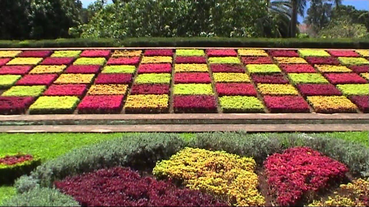 madeira monte palace tropical garden jardim botanico sd video youtube - Tropical Garden 2016