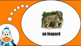 J'apprends des mots # Les animaux = Vol 1