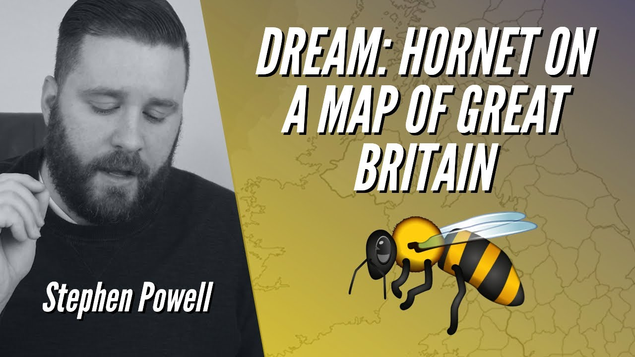 DREAM: HORNET ON A MAP OF GREAT BRITAIN