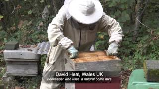 Varroa - Dr.David Heaf on Treatment-Free Beekeeping - L'Apiculture naturelle sans traitement