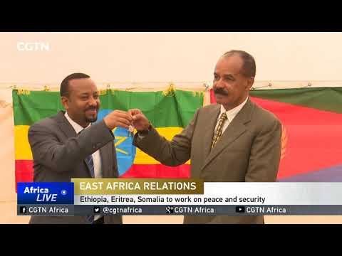 IGAD hails Ethiopia, Somalia, Djibouti, Eritrea cooperation thumbnail