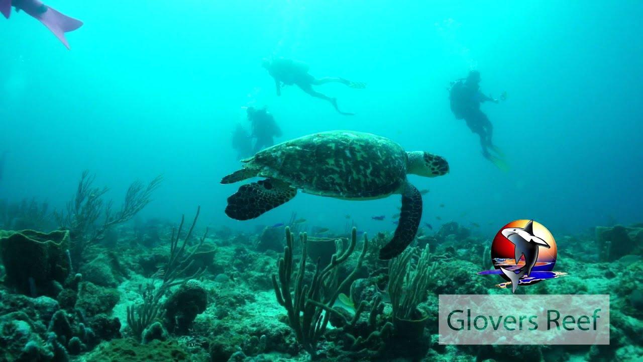 Glovers Reef, Grenada
