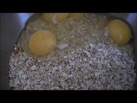 Pumpkin Apple Dog Biscuits