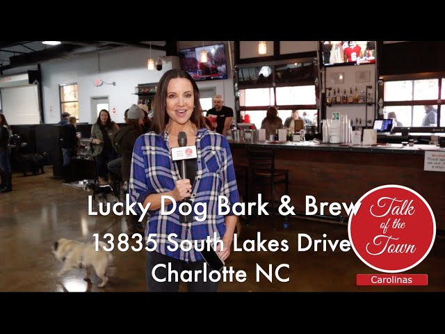 Lucky Dog Bark and Brew