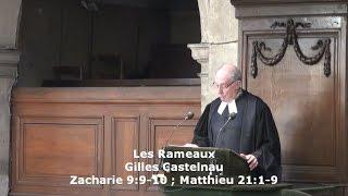 Les Rameaux  (Zacharie 9:9-10 ; Matthieu 21:1-9)