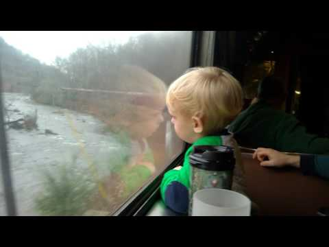 Videos from Great Smoky mountains railroad, very cute!