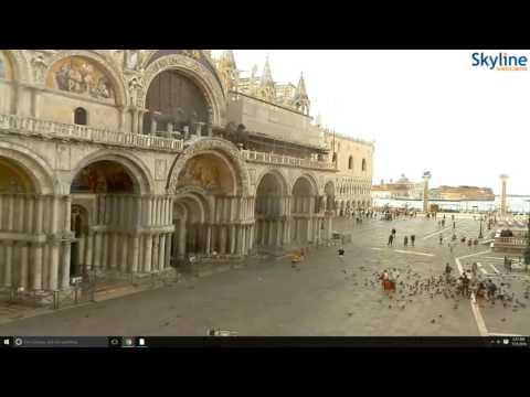 Piazza San Marco - Venice - Live