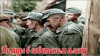 """Почему немцы в Советском плену жаловались, что их мучает """"Цыганская мафия""""? военные истории"""