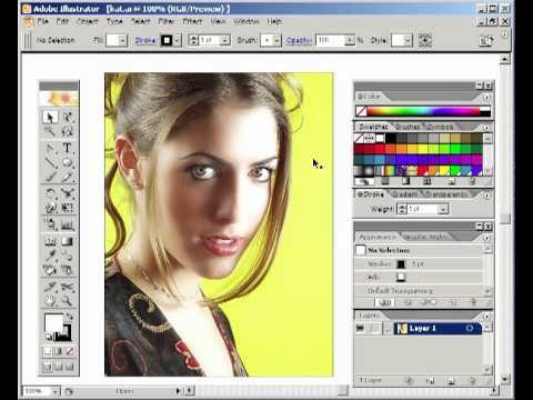 Inside Adobe Illustrator CS - Live Paint