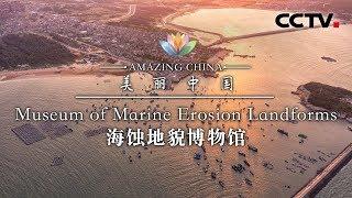 《美丽中国》海蚀地貌博物馆 | CCTV