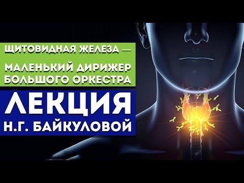 Лекция Байкуловой Н.Г. «Щитовидная железа — маленький дирижер большого оркестра»