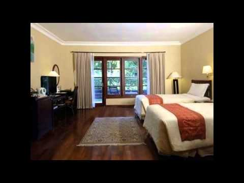 Hotel Murah Di Surabaya Dekat Kebun Binatang