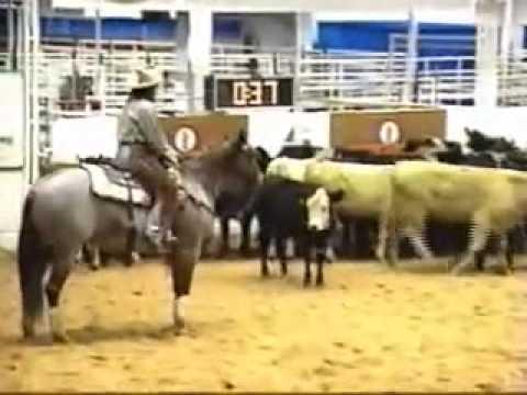 2000 NCHA Open World Champion - Bet Yer Blue Boons & Lindy Burch