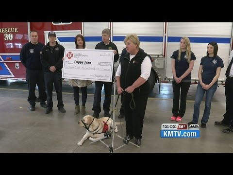 Firefighters raise money to provide service dog for veteran