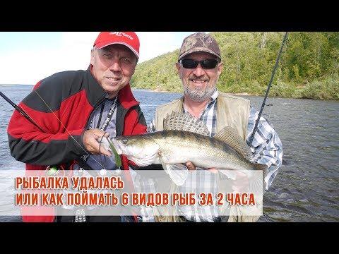 Рыбалка удалась или как поймать 6 видов рыб за 2 часа