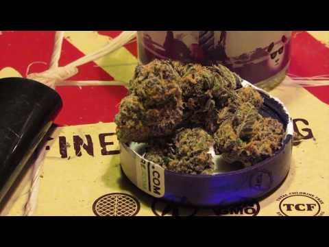 Granddaddy Purple (GDP) Strain Review!