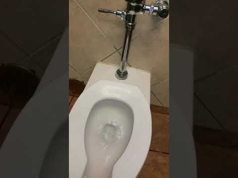Toilet academy in Easley South Carolina