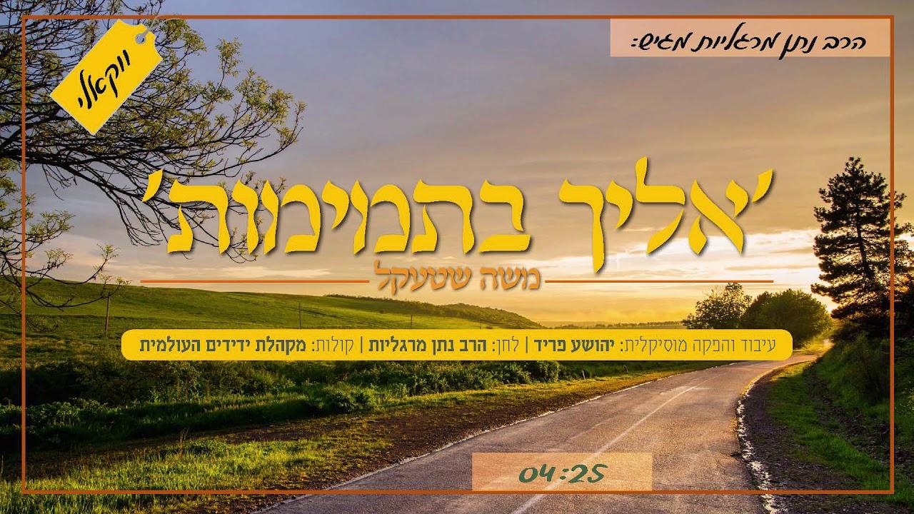 אליך בתמימות - משה שטעקל & מקהלת ידידים - ווקאלי | Eilecha Bitmimus - Moshe Shtekl & Yedidim Choir