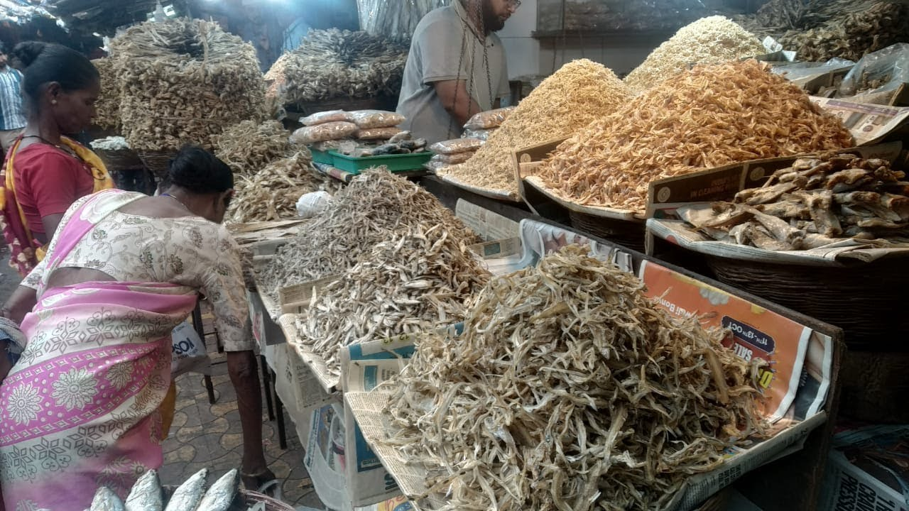 Dry Fish Market Kalyan Dry Fish Market In Mumbai Saqib Hunerkar Vlogs Youtube