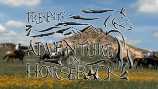 Colorado Cattle Company Adventure on Horseback