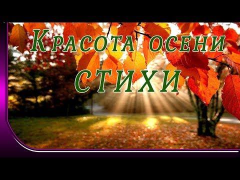 Красивые стихи про осень  Красота осени