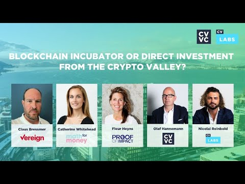 Blockchain Incubator or Direct Investment from the Crypto Valley?