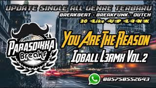 You Are The Reason - Iqball L3Rmx Vol.2