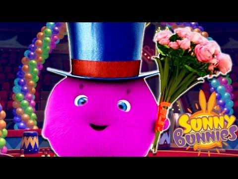 Cartoons For Children | Sunny Bunnies THE SUNNY BUNNIES MAGICIAN | Funny Cartoons For Children