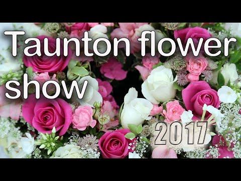Here is Taunton Flower Show 2017, Somerset, UK