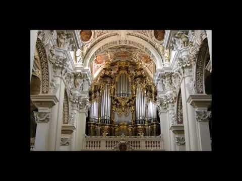 Toccata and fugue in D minor Bach Amazing Organ