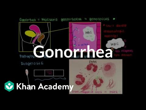 Pathophysiology, Diagnosis, Treatment, And Prevention Of Gonorrhea | NCLEX-RN | Khan Academy