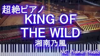 【超絶ピアノ】「KING OF THE WILD」 湘南乃風 【フル full】